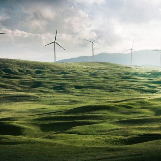 Πράσινη επιχειρηματικότητα και περιβαλλοντική διαχείριση