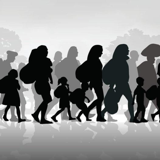 Διαδικτυακό Σεμινάριο για το Προσφυγικό και τη Μετανάστευση